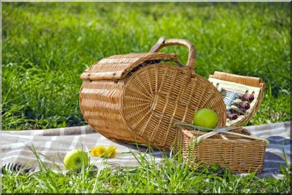 Подготовка и организация пикника