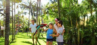 Детский отдых на Канарских островах