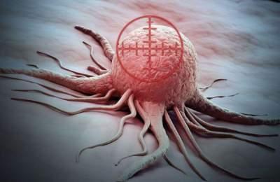 новые мишени для лекарств от рака