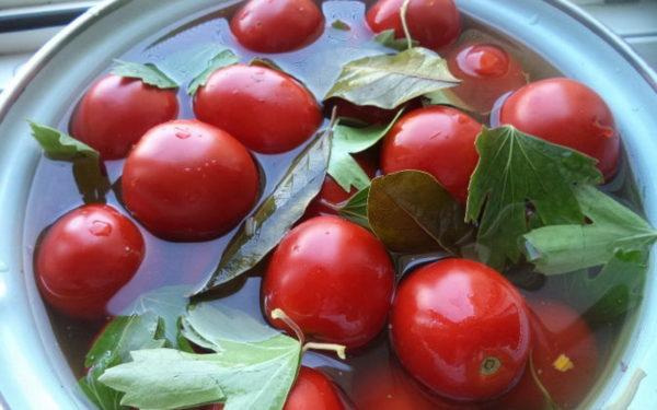 помидоры с горчицей