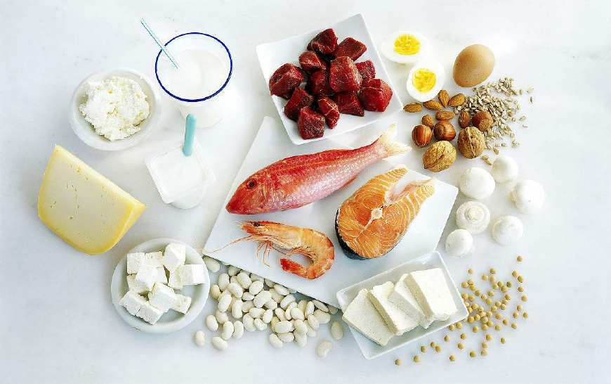 белковые продукты